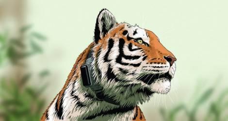 Американский художник нарисовал комикс о тигре Упорном