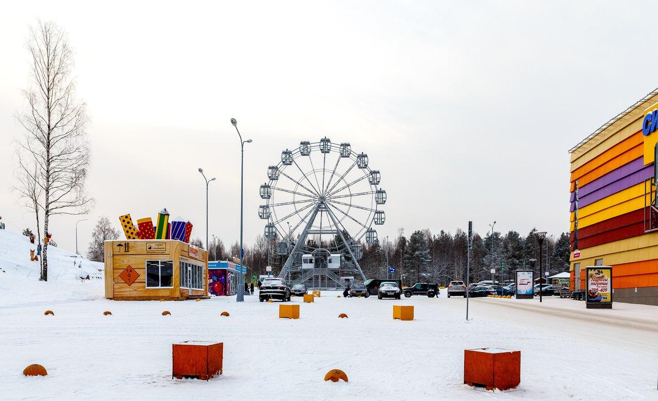 Зимний отдых: Птз