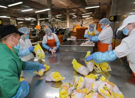 В Приморье за год произведено 70 тысяч тонн мяса