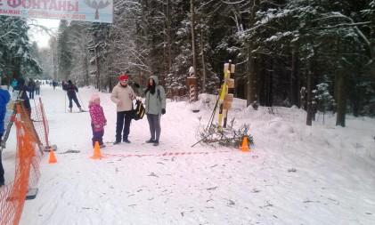 Метлохоккеем и метанием елок отметили День снега жители Петрозаводска