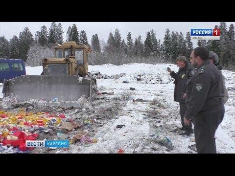 Полтонны санкционных продуктов уничтожили на глазах тележурналистов