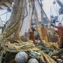 Рыбопромышленные компании Приморья будут строить суда за счет инвестиционных квот