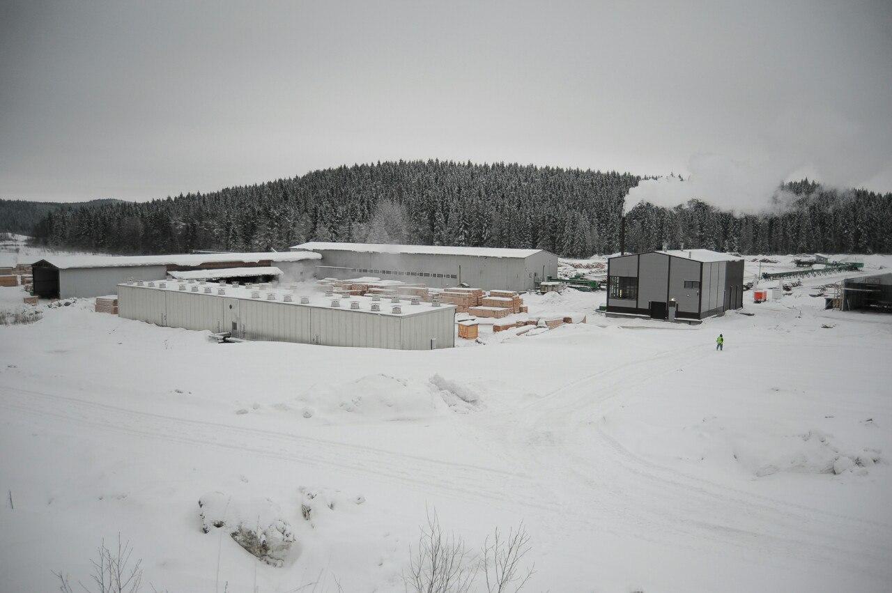 Сортавальский лесозавод и правительство Карелии помогут друг другу