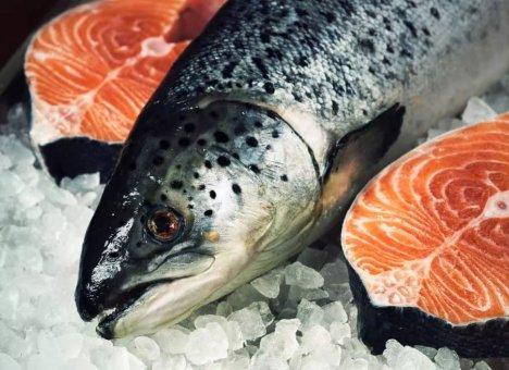 Уникальный рыбный рынок откроется через полтора года во Владивостоке