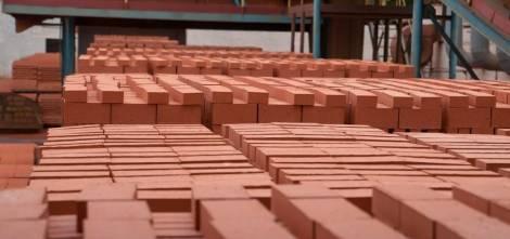 Бизнесмены Китая заинтересовались производством кирпича в Амурской области