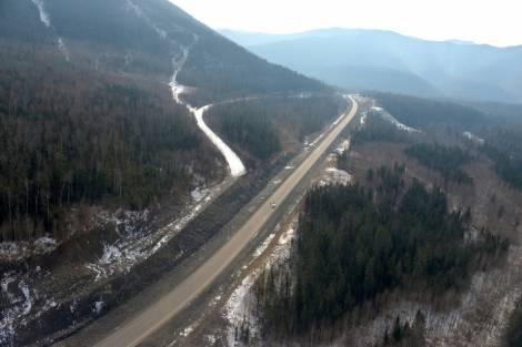 Национальный лесной форум пройдет в Хабаровске