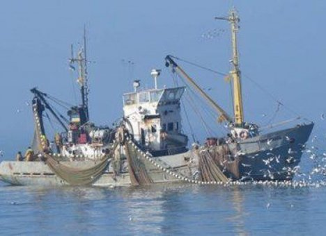 Рыбаки радеют за каботаж