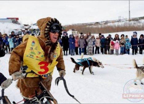 Чемпионом в гонке на собачьих упряжках