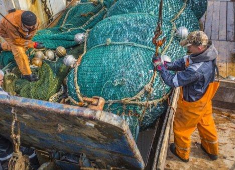 Приморские рыбаки увеличили вылов камбалы и трески