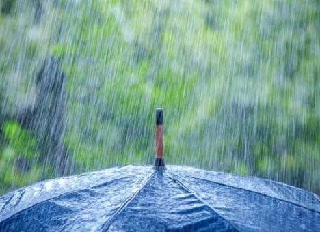 В Приморье ожидаются дожди и грозы