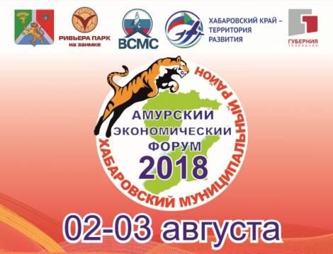 Более 150 предпринимателей из России и Китая соберутся на Втором Амурском экономическом форуме