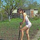 Россельхознадзор прокомментировал информацию о запрете выращивать овощи на дачах и огородах