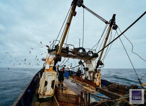 Рыбакам Приморья не понравилось, как подели прибрежные квоты