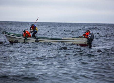 В Приморье экспертный совет по рыбной отрасли возобновил работу