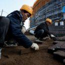 Северные корейцы продолжат работать в Приморье, но в меньшем количестве