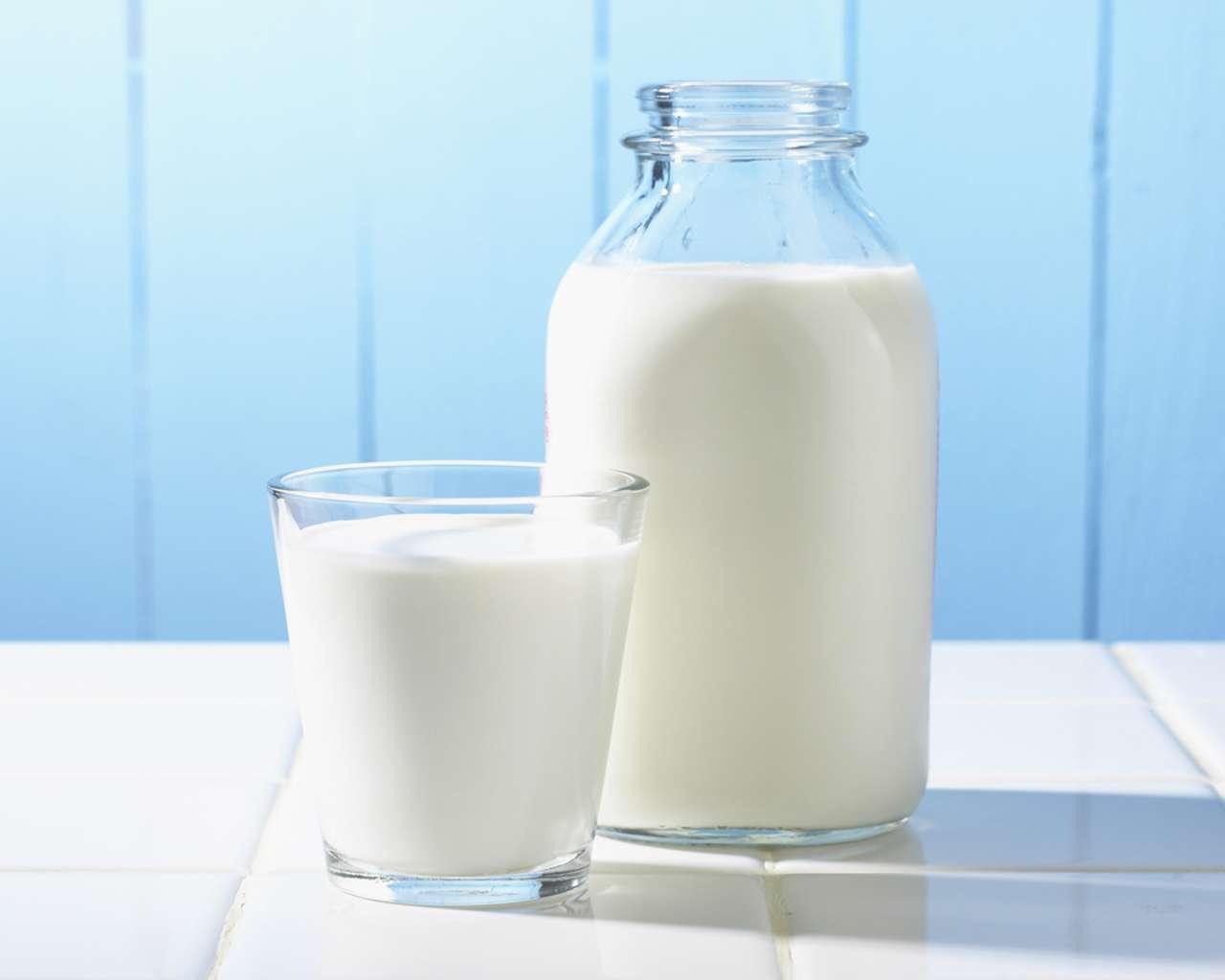 Оптовая торговля молочными изделиями онлайн