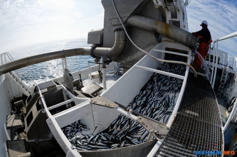 На Курилах освоили европейский вид рыбалки - близнецовый лов