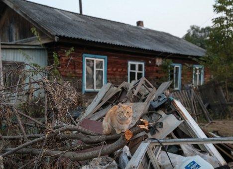 Приморье получит допсредства для помощи пострадавшим от стихийных бедствий в 2016-17 годах