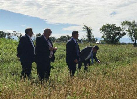 В Спасском районе Приморского края планируют открыть цех по переработке молока