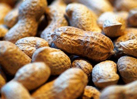 Китайцы подбросили приморцам пять тонн токсичного арахиса