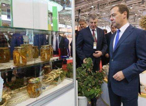 Медведев посоветовал россиянам принять горькое лекарство