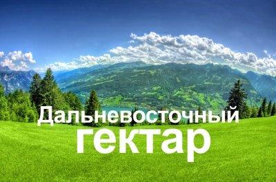 В Приморском крае за последний месяц выдано еще около 500 дальневосточных гектаров