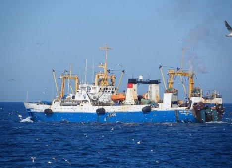 Русская Рыбопромышленная Компания получила квоты под новый завод