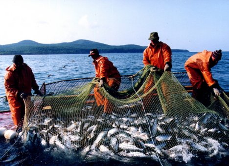 Открыта регистрация участников XIII Международного конгресса рыбаков