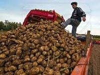 Приморье будет развивать сельское хозяйство в приказном порядке