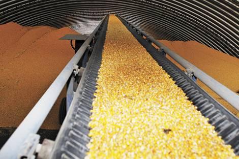 Аграрные проекты меняют структуру отрасли