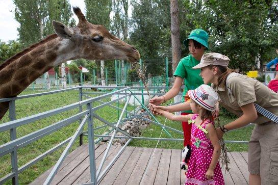 Куда можно сходить с ребенком в Ростове-на-Дону?