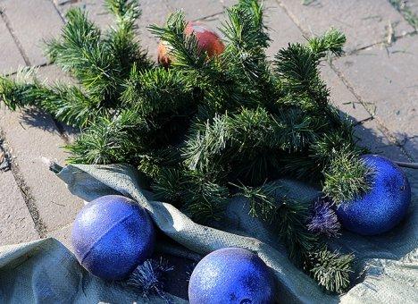 Во Владивосток доставили десять новых праздничных елок