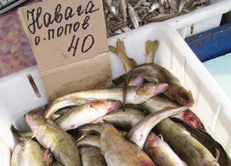 Рыба в Приморье станет социально доступной