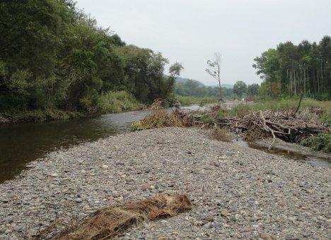 Речке Амба в Приморье чуть не пришла амба