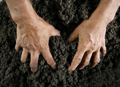 Кожемяко прекратит хаос в раздаче сельхозземель в Приморье