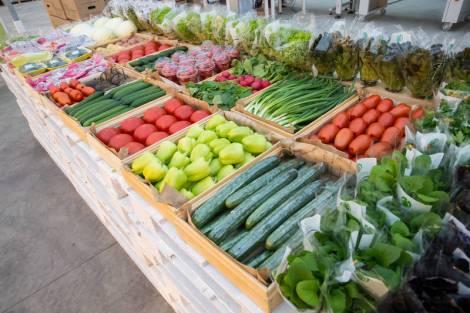 На Сахалине намерены модернизировать овощехранилища