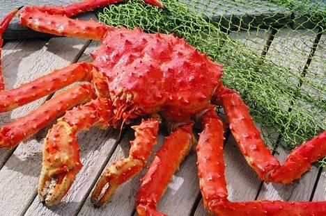 Более 25 тысяч тонн крабов выловили рыбаки Приморья