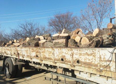 #КомандаПриморья помогла старикам с дровами