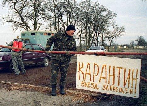 В Михайловском районе, где выявлен ящур, введен карантин