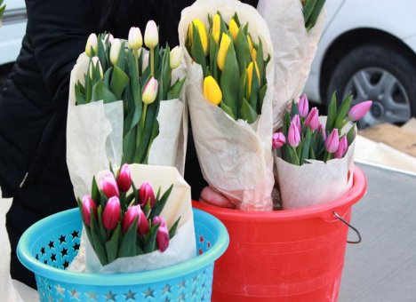 Администрация Владивостока принимает заявки на участие в мартовской торговле цветами