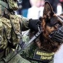 Вслед за Владивостоком массовая эвакуация началась в Хабаровске