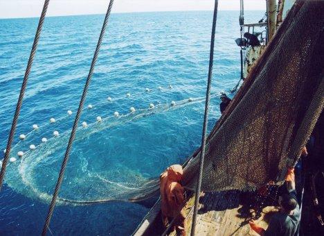 Рыбаки устали от закулисных войн в отрасли