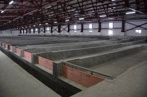 Власти Сахалина выделили 300 млн рублей на поддержку бизнеса