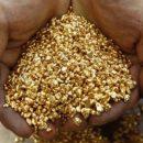 В Хабаровском крае добыли 24,8 тонн золота