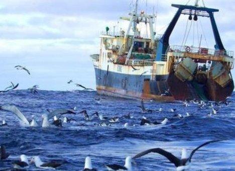 Японцы не дают дальневосточникам ловить рыбу в российских водах