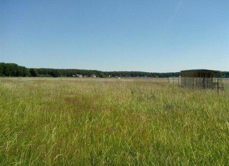 В Приморье распродаются земли сельскохозяйственного назначения
