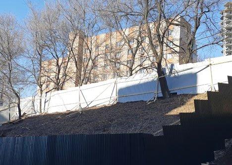Во Владивостоке под очередной коммерческий склад ночью вырубили деревья