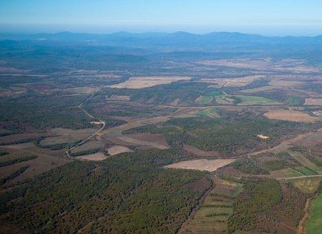 Гектары в Приморье приглянулись жителям практически всех регионов страны