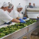 Миссия – обеспечить людей здоровой пищей