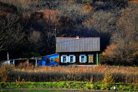 Веб-разработчик из Москвы будет выращивать особые грибы в Приморье